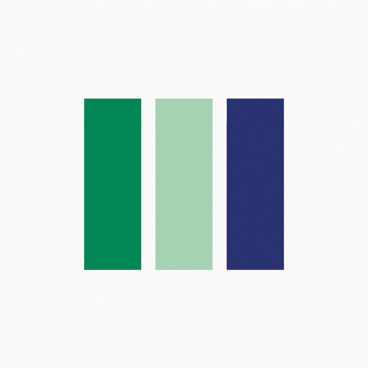 D'S Rengøring og Service farver