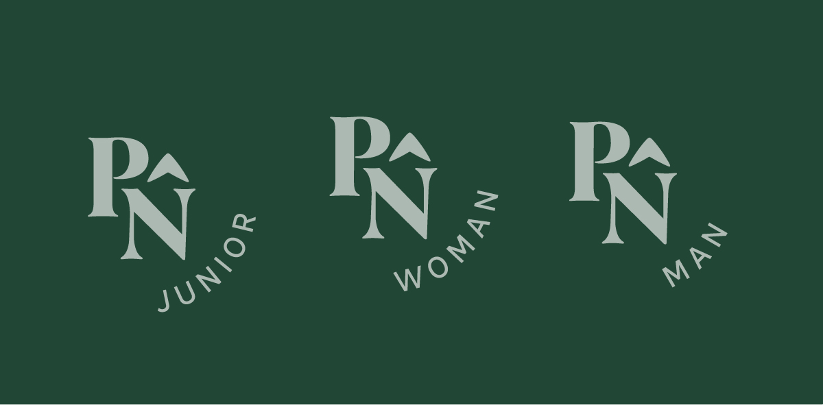 Pure North Logo V4