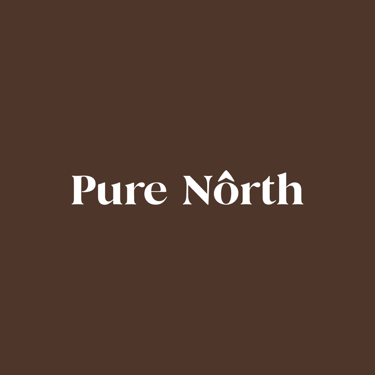 Pure North Logo V2
