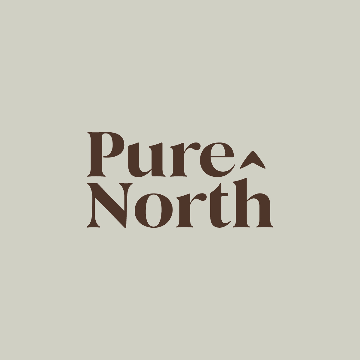 Pure North Logo